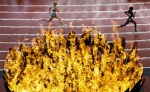 View the album Photo Highlights from the 2012 Olympic Games - August 3
